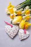 Spring  yellow flowers and two decorative hearts on grey texture Stock Photos