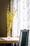 Spring yellow flowers in vase Royalty Free Stock Photos
