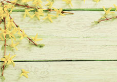 Spring yellow flowers on wooden background Royalty Free Stock Photography