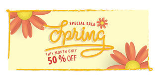 Spring yellow and orange flower 50 percent off heading design an Royalty Free Stock Images