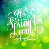 Spring for you. Lettering text. Abstract Stock Photo