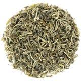 Spring Yunnan Simao Premium Green Tea  Gao Shan Yin Ya in round Stock Photos