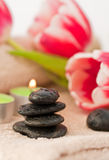 Spring zen like SPA. With red tulips Royalty Free Stock Photography
