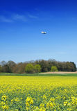 Spring Zeppelin Scene Stock Images