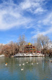 Spring Zong-jiao-lu-kang Park with Birds Royalty Free Stock Photo