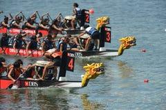 Springa för drakefartyg som avslutar DBS-flodregatta 2013 Royaltyfri Foto