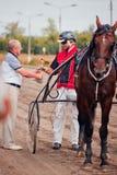 Springa för travaaveln för hästar Fotografering för Bildbyråer