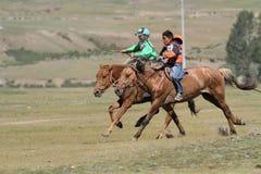 Springa för två hästar under den Naadam festivalen Royaltyfri Fotografi