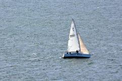 Springa för yacht Royaltyfri Foto
