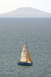 Springa för yacht Royaltyfria Bilder