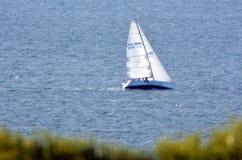 Springa för yacht Royaltyfri Bild