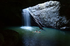 Springbrook Nationaal Park - Queensland Australië Stock Foto's