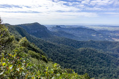 Springbrook National Park. View from the Best of All Lookout at Springbrook national park, Australia Stock Photos