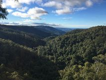 Springbrook National park royalty free stock images
