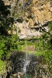Springbrook vattenfall Royaltyfri Fotografi