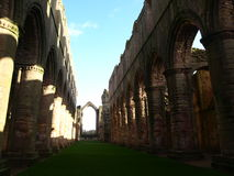 Springbrunn Abbey Ripon Yorkshire England royaltyfri fotografi
