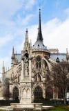 Springbrunn av oskulden och Notre-Dame de paris Fotografering för Bildbyråer