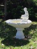 Springbrunn av ungdom Royaltyfri Fotografi