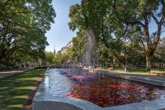 Springbrunn för fyrkant för PlazaIndependencia självständighet med rött vatten som vin - Mendoza, Argentina - Mendoza, Argentina arkivbilder