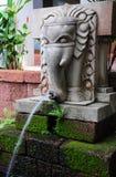 Springbrunn för stenelefantvatten Royaltyfri Bild