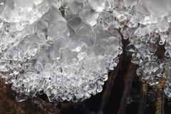 springbrunn fryst vatten Nära övre för istapp vinter för blåa snowflakes för bakgrund vit Royaltyfria Foton