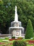 Springbrunn i denslott helheten i Peterhof, Ryssland Fotografering för Bildbyråer