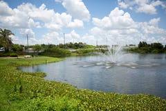 Springbrunn i ett liten damm eller sjö i Florida med stillsam landsc royaltyfria bilder
