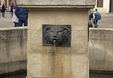 Springbrunn i form av ett lejons huvud i Lviv, Ukraina arkivbild