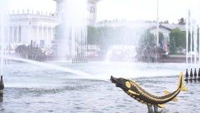 Springbrunn i form av fisk stock video
