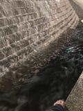Springbrunn i parkera Arkivfoto