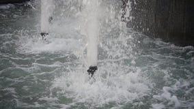 Springbrunn i stad stock video