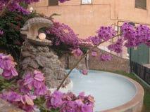 Springbrunn med ett skal och en pärla i en stadsträdgård royaltyfri fotografi