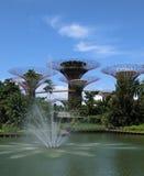 Springbrunn och de toppna träden Arkivfoto