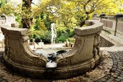 Springbrunn på botaniska trädgården (Orto Botanico), Trastevere, Rome, Italien Arkivfoto