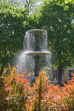 Springbrunn på fyrkantiga St Louis i Montreal Royaltyfria Bilder