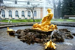 "Springbrunn ""Triton"". Peterhof. Arkivfoto"