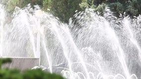 Springbrunnar i staden parkerar suddig bakgrund stock video