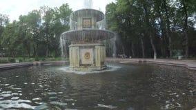 Springbrunnar parkerar in Peterhof arkivfilmer