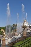Springbrunnarna av Peterghoff Arkivbilder