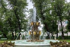 Springbrunnarna av sommarträdgården Helgon Peteburg Royaltyfria Bilder