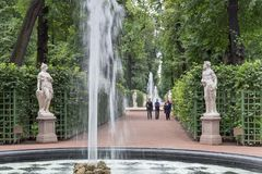 Springbrunnarna av sommarträdgården Helgon Peteburg Royaltyfri Fotografi