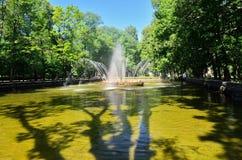 Springbrunnen Royaltyfria Foton