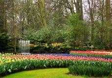 springbrunnen arbeta i trädgården keukenhof Royaltyfri Foto
