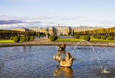 Springbrunnen av Neptun i överkanten parkerar helheten Peterhof Fotografering för Bildbyråer