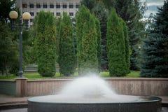 Springbrunnen i parkera Royaltyfri Bild