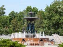 Springbrunnen i parkera Män håller koppen Royaltyfria Bilder