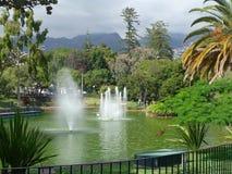 Springbrunnen i staden parkerar royaltyfria foton