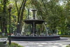 Springbrunnen Mariinsky parkerar Kiev Ukraina Royaltyfri Foto