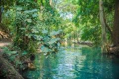 Springbrunnen, naturliga brunnar i Pak Chong är en turist- dragning Royaltyfria Foton
