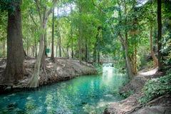 Springbrunnen, naturliga brunnar i Pak Chong är en turist- dragning Arkivfoton